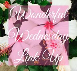 Wonderful Wednesday Link Up