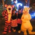 diy minnie mouse costume women