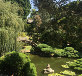 huntington library free day tickets
